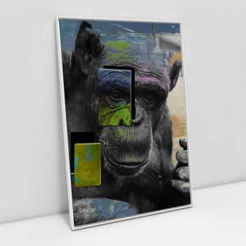 Quadro Macaco Animal Abstrato - Rafael Spif
