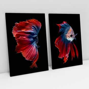 Quadro Red and Blue Betta Fishes - Peixes Ornamentais - Kit de 2 Telas
